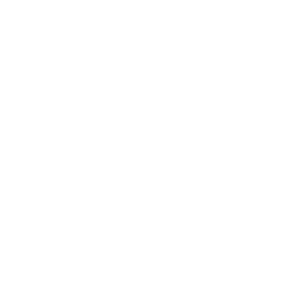 SMP Penetration Testing Mentor